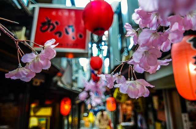 pink flowers lantern alley tokyo