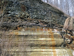Bleeding unconformity (Chattanooga Shale over Cumberland Formation; Burkesville West Rt. 90 roadcut, Kentucky, USA) 6
