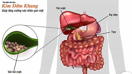Có nhiều phương pháp trong điều trị sỏi túi mật