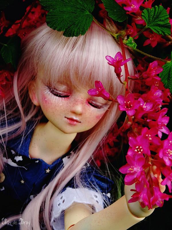 [Volks MSD Myu Sweet Dream] Ombéline p.4 + vidéo bas de page - Page 4 41541799792_e8ff6d339f_c
