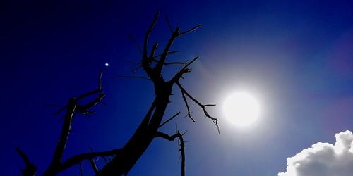 twin star sun racs0706 racs0607 cebuano bohol alicia philippines island sky blue clouds huawei nature