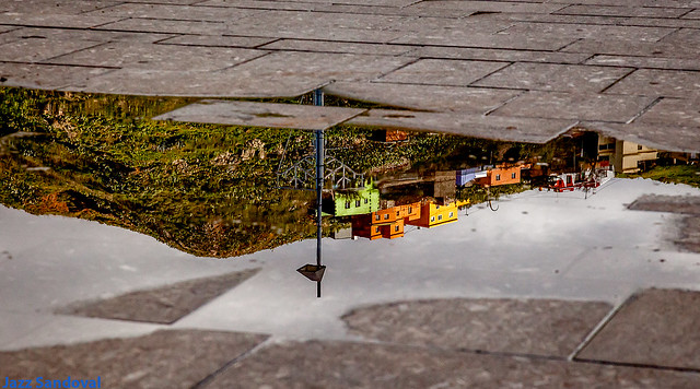 Reflejadas. La Laguna, Tenerife, diciembre 2010.