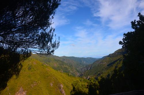 Bild von der grünen Landschaft auf Madeira