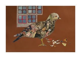 Bird #29