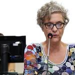 qui, 17/05/2018 - 13:57 - Vereadora: Cida FalabellaAudiência pública para apresentação pelo Tribunal de Contas do Estado de Minas Gerais (TCE-MG) do Programa na Ponta do Lápis, aos vereadores membros da ComissãoData: 17/05/2018 Local: Plenário Camil CaramFoto: Karoline Barreto/CMBH