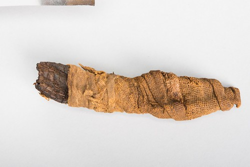 Crocodile Mummy, San Antonio Museum of Art. From Science and Zoo Help Museum with Egyptian Animal Mummy Exhibit