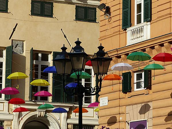 parapluies multicolores