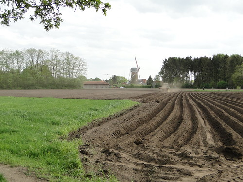 Farmer at work near the mill of Pulderbos