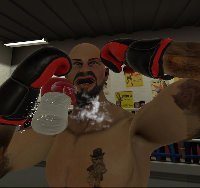Uzbuđenje borbe - Straight Punch