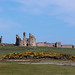 Dunstanburgh Castle, Northumberland by Brian Dunning