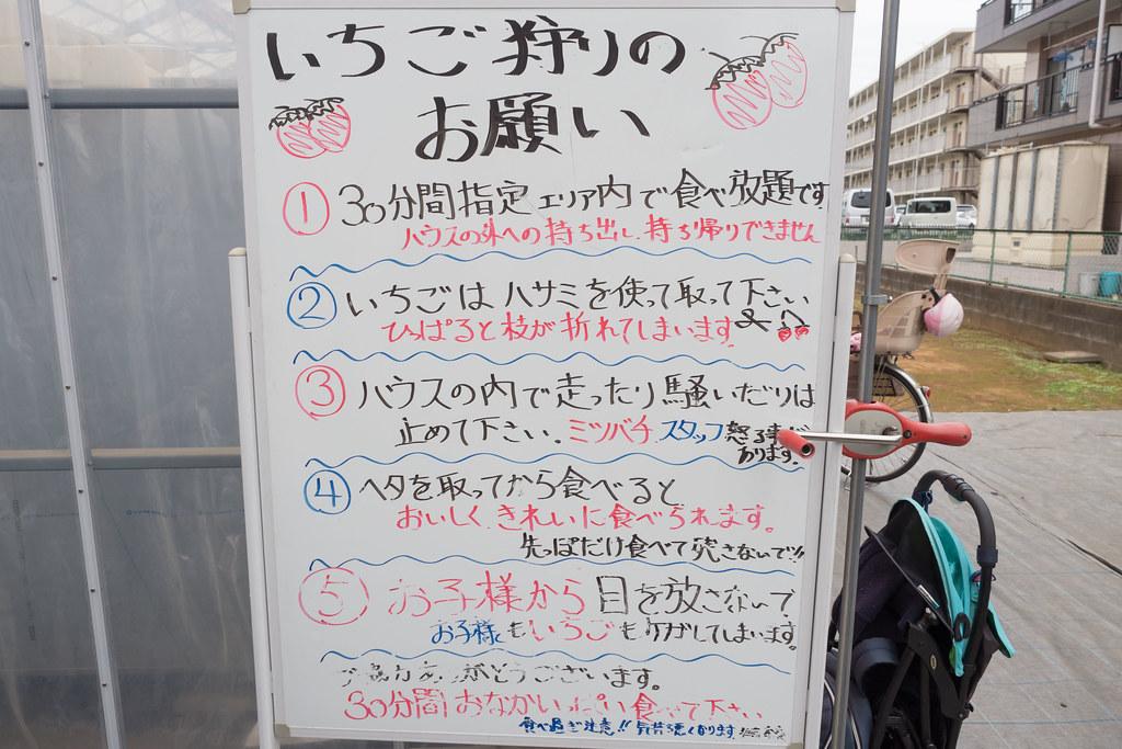 武笠農園いちご狩り-2