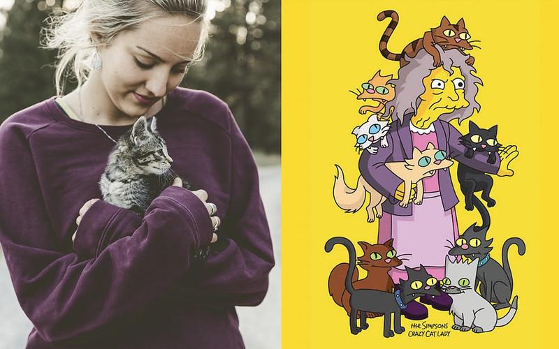 sindrome de noe gatos