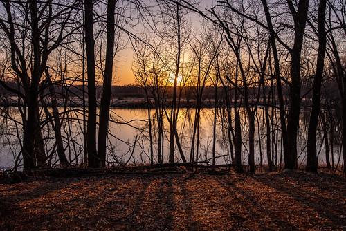 brainerd crowwingstatepark minnesota mississippiriver forest leaves river riverbanks spring statepark sun sunset sunshine trees unitedstates us