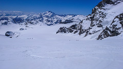 Zjazd lodowcem Vadretta di Fellaria, z przełęczy Bella Vista 3688m do schroniska Marinelli Bombardieri. W tle szczyt Monte Disgrazia.