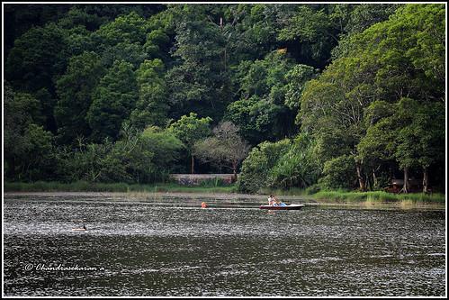7866 - Pookote lake, Wayanad