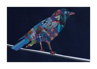 Bird #24