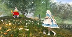 Alice's Adventure Begins