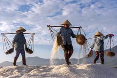 Farmers pilling up collected salt in field_Vietnam_DSC_0476
