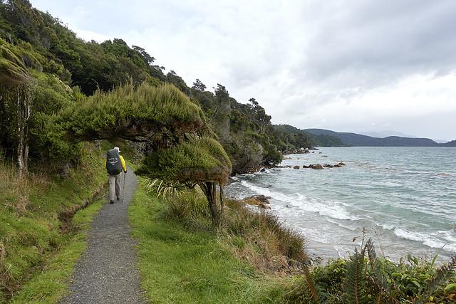 Oceanside walking