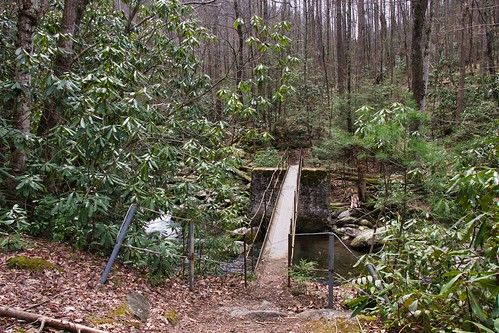 IMG_11725_Bridge_On_Thunderhead_Prong_Trail