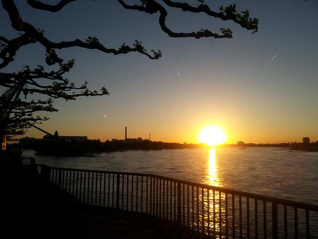 Düsseldorf Sunset over Rhine