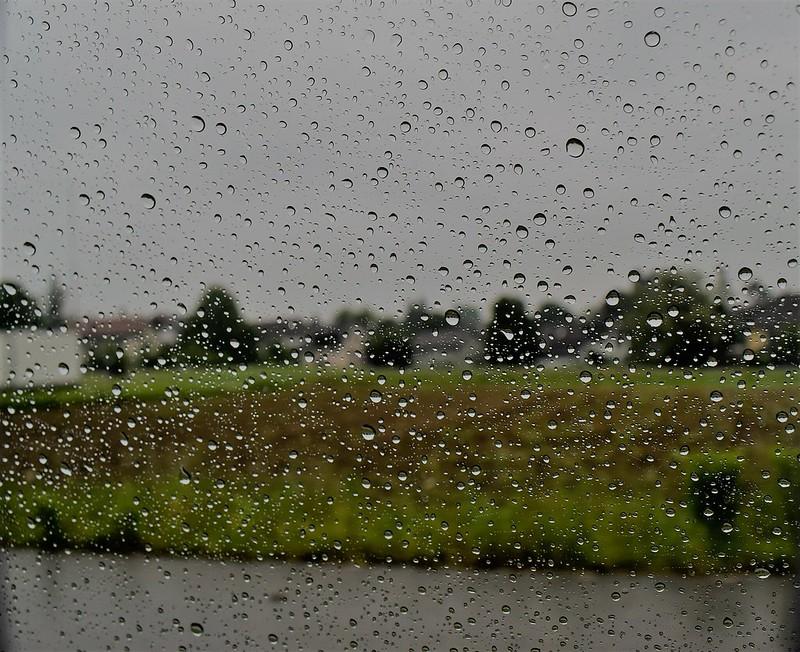 Rain 16.05 (10)