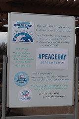 Multicultural Peace Day-41