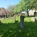 Irvine Old Parish Churchyard (215)