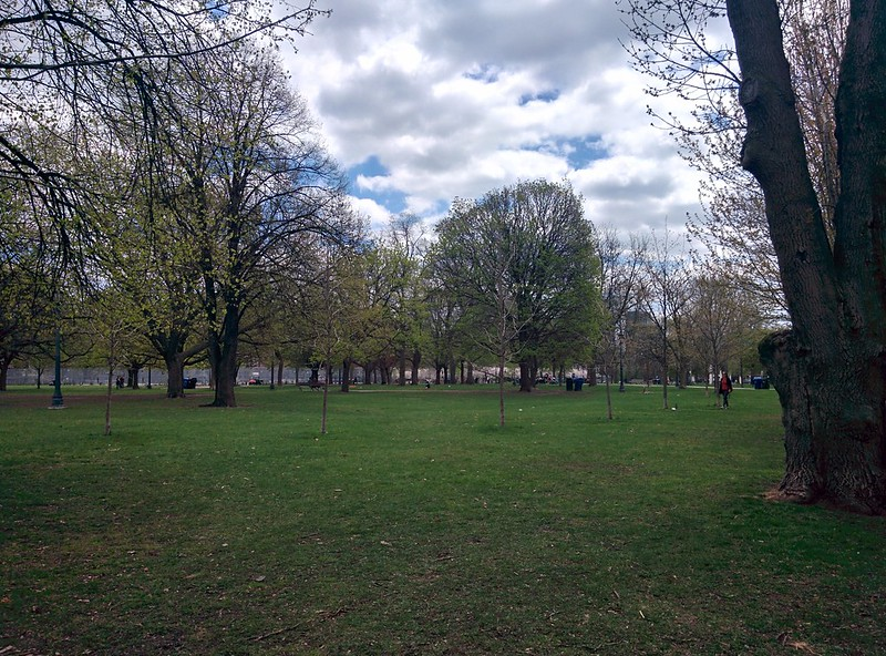 Green lawn #toronto #spring #trinitybellwoods #parks #latergram