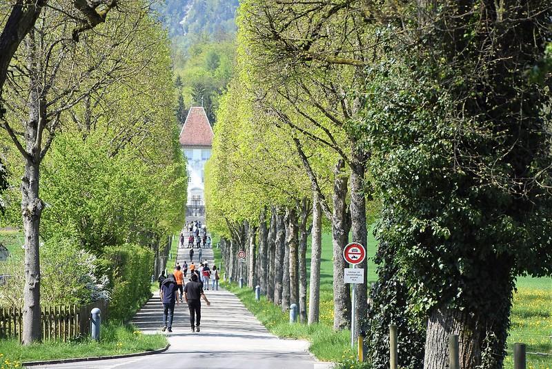 Feldbrunnen village 21.04 (3)