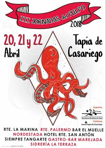 III Octopus  in Tapia de Casariego