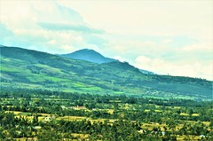 En plena Cordillera.