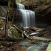 Gregg Phipps Falls by clay.wells (900 trillion views!)