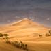 •Sandcastle• by jsnowphotography