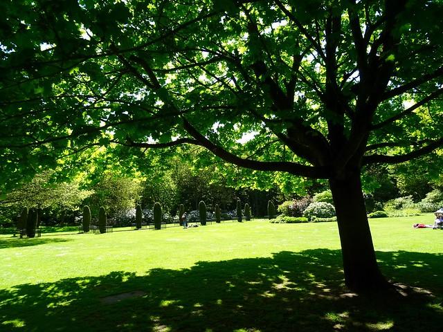 Speke Hall Gardens, Sony DSC-HX60, Sony 24-720mm F3.5-6.3