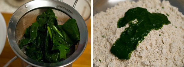 Spinach Chapathi cooking steps by GoSpicy.net
