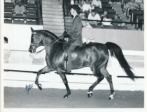 Serada_1976_Natl_Champ_Eng_Pl