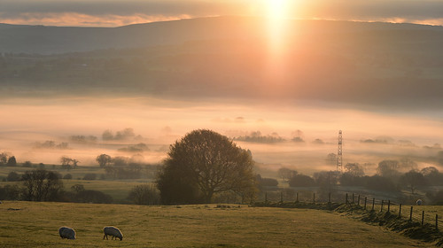 dawn sunrise mist valley biddulphmoor staffordshire moorlands spring peakdistrict pylon beginning ~flickrinnes flickrinnes