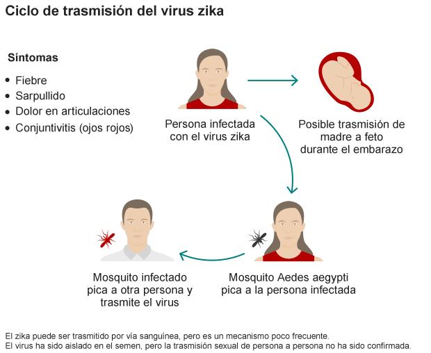 ciclo-transmision-virus-zika