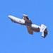 "United States Air Force Fairchild Republic A-10 Thunderbolt II ""Warthog"" 79-0202 C/N A10-0466"