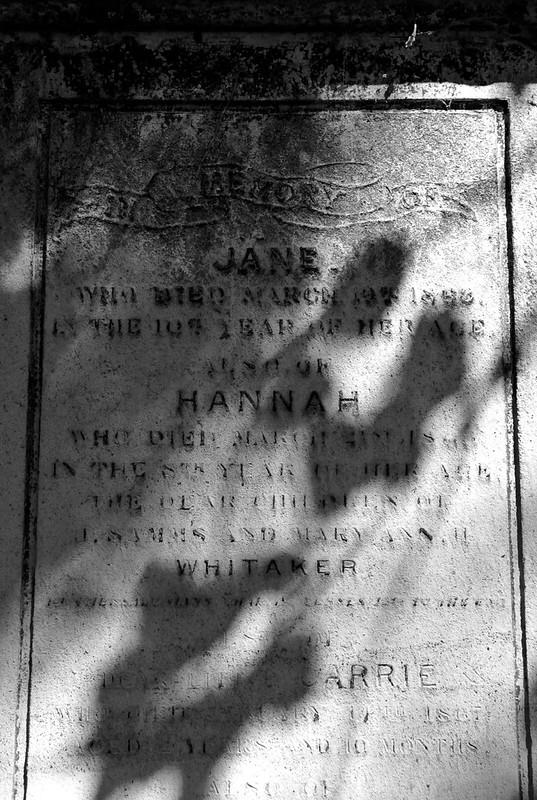 Abney Park Cemetery_2018-10