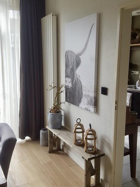 Houten bankje schilderij hooglander