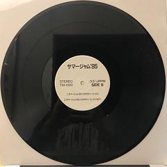 スチャダラパー:サマージャム '95(RECORD SIDE-B)