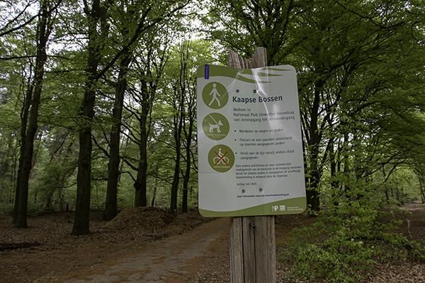 kaapse bossen doorn