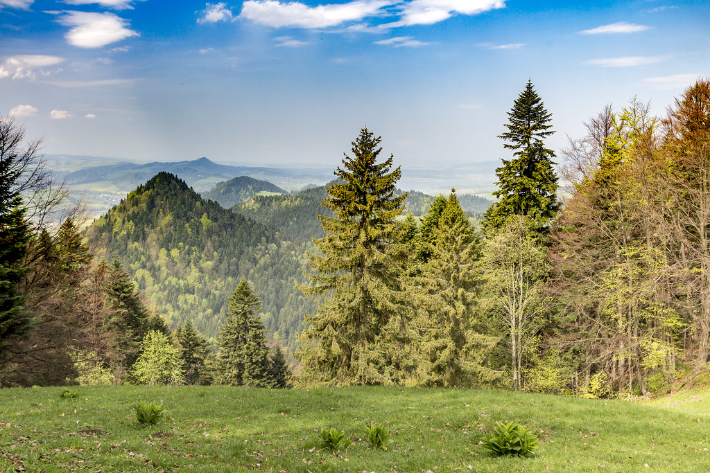 Pieniny - Poland