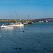 Keyhaven Harbour Pano.jpg