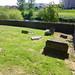 Irvine Old Parish Churchyard (447)