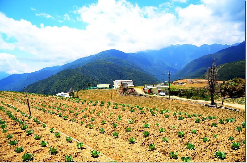 平岩山展望 3