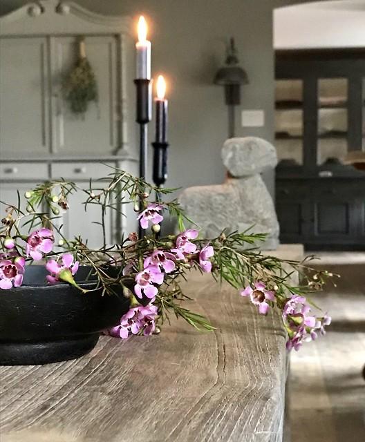 Kandelaars, paarse bloemen, stenen ram