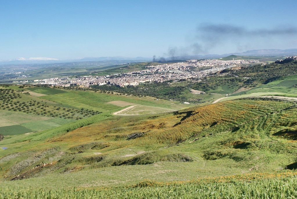 Vue sur la médina de Fès depuis les collines verdoyantes du nord.